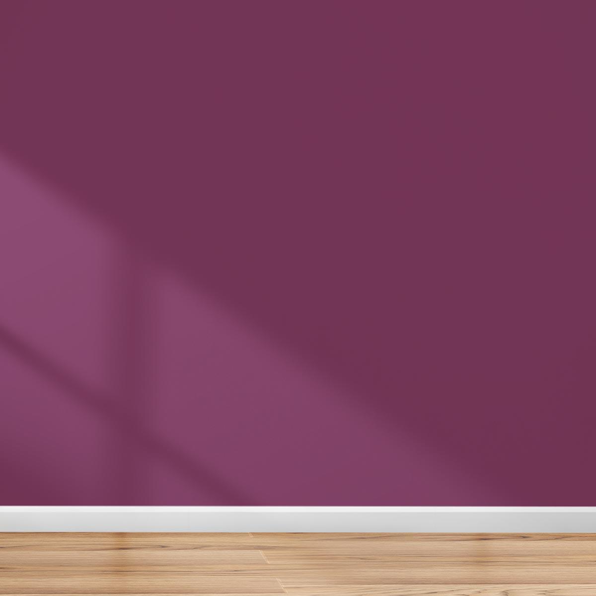 Barossa Interior Paint