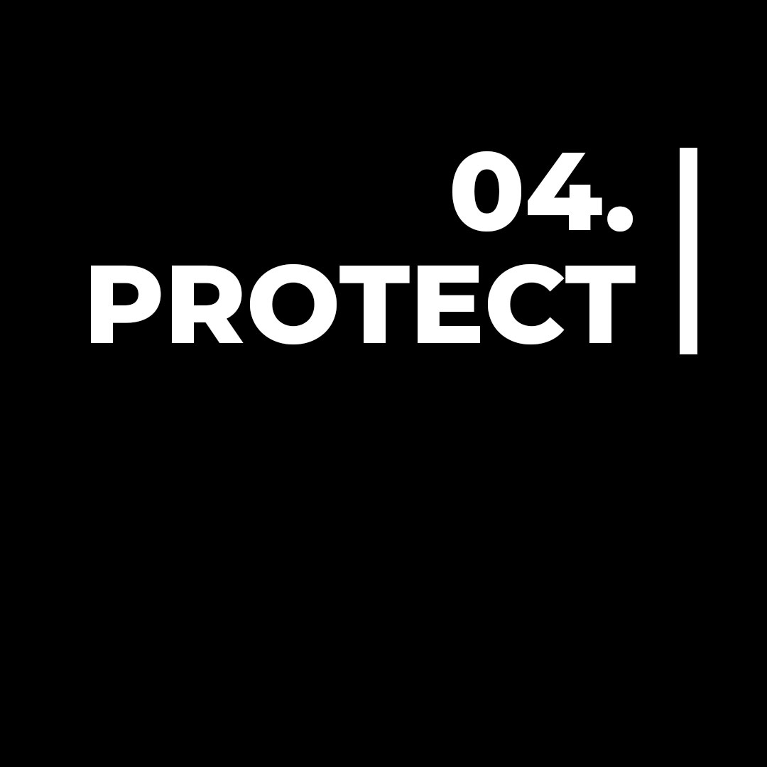 Step 4 | Protect